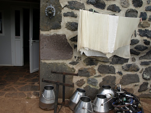 Milk pails and cheese cloth from Kathe Lison's travels