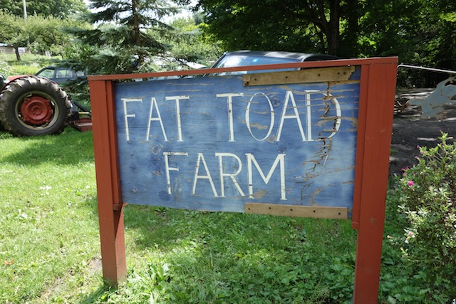 Fat Toad Farm Sign