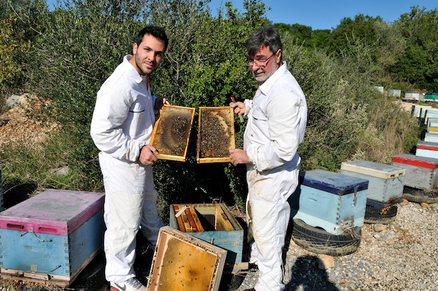 Father-son beekeepers who harvest Greek forest honey for The Olive Table