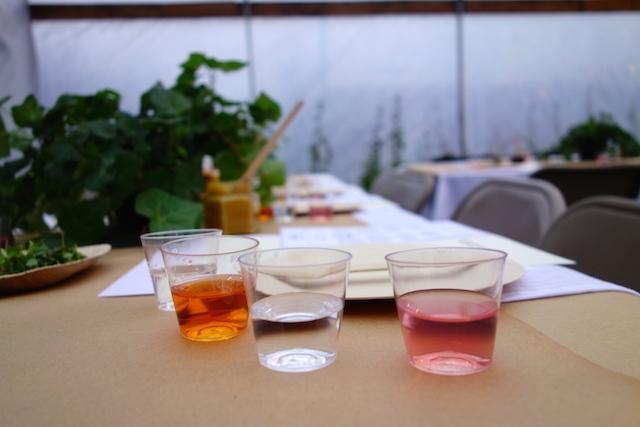 Gin Pairing at Greensgrow