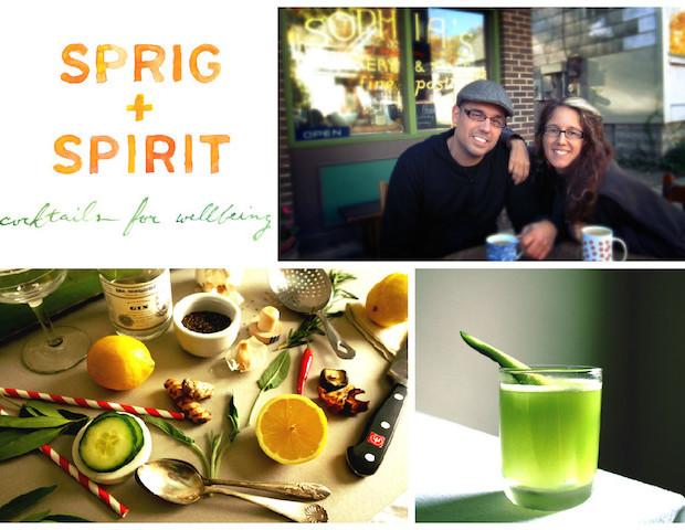 SprigandSpirit Collage