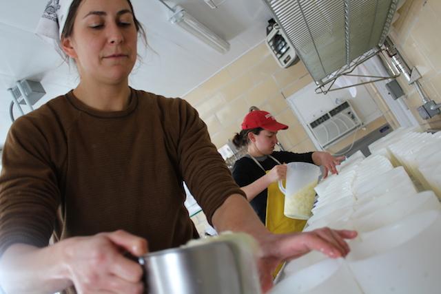 Stefanie Angstadt and Katelyn Repash making cheese