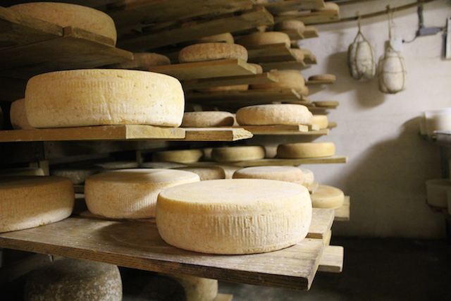 A glimpse into the cheese cave at Parish Hill