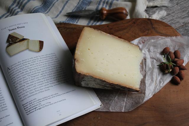 Tuma Persa Italian Cheese