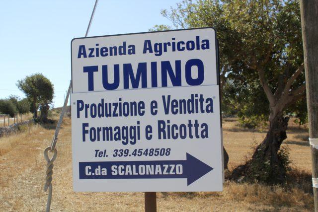 Tumino Farm in Ragusa